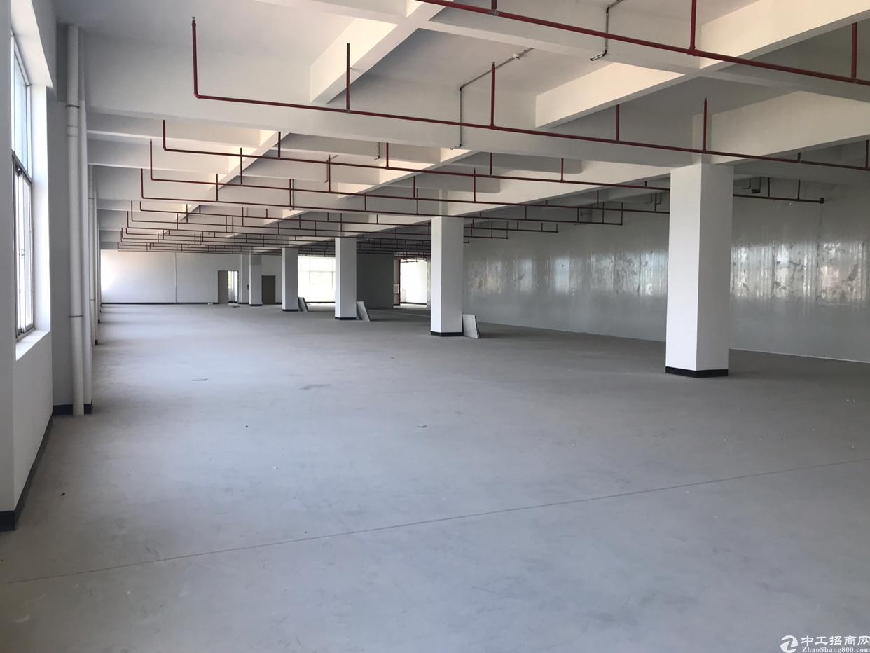 惠州沙田新出22000平方标准厂房