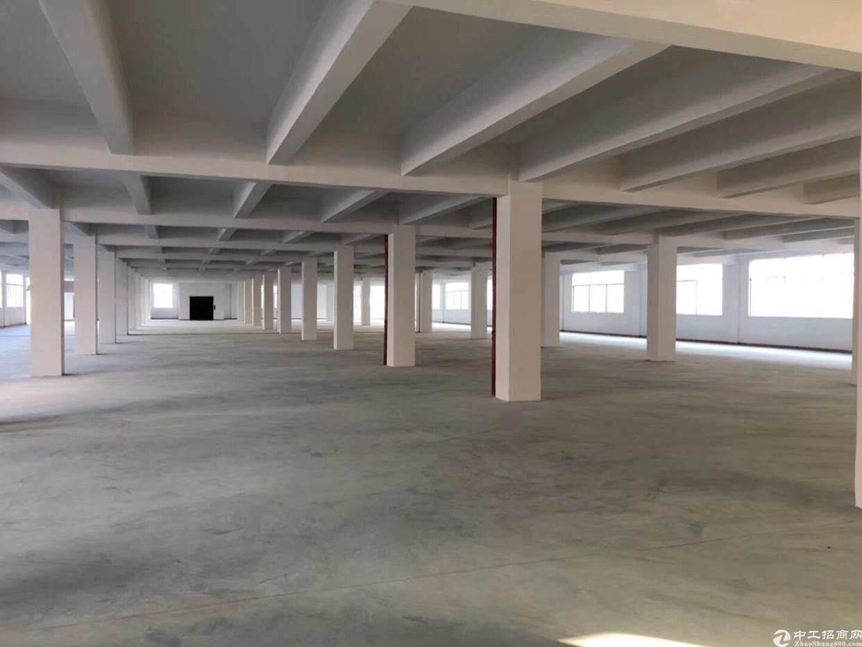 独栋厂房三层3600㎡