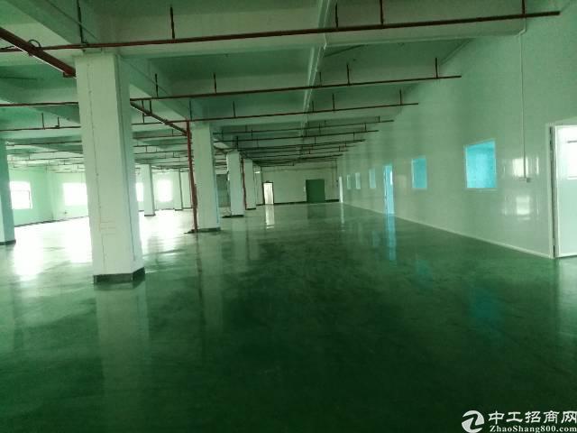 大朗新出带地坪漆标准厂房1200平方