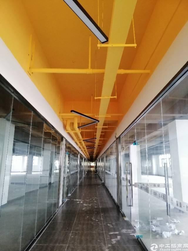 布吉双地铁口红本高绿化精装修带消防喷淋厂房150平起租布吉双