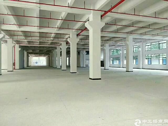 公明新出原房东一楼独院厂房分租2000平米