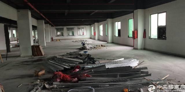 坂田五和大道新出带装修楼上800平厂房出租可分租
