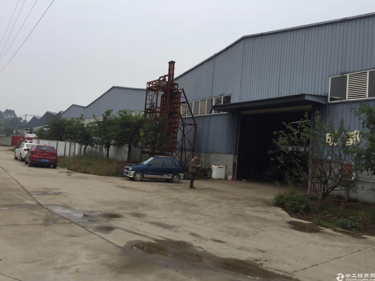出租青白江8000平厂房可分租