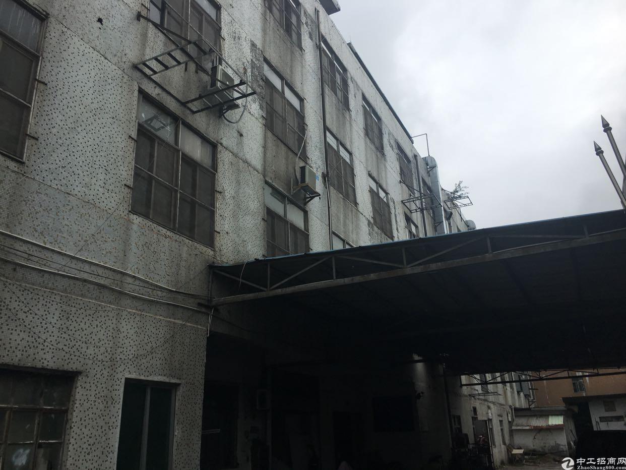 黄江镇中心原房东出租一层1000平实际面积租10块