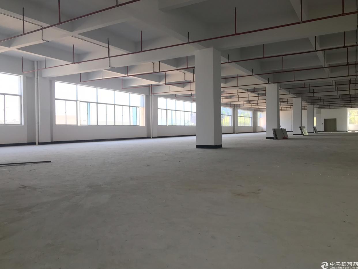惠州沙田新出22000平方标准厂房-图2