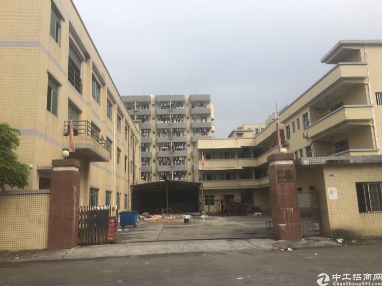 大朗新出村委独院厂房5000平出租