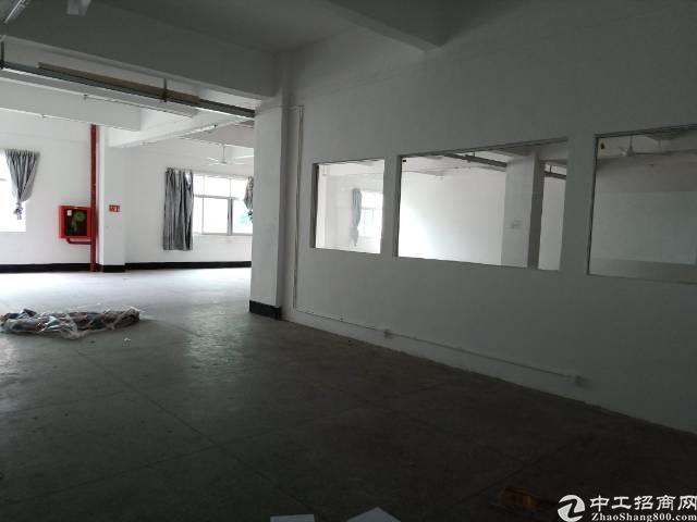葵涌大型工业园区新出楼上1780平,有现成办公室装修