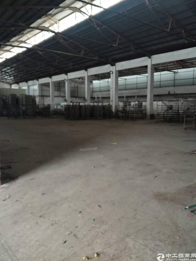 原房东独院钢构厂房出租,高度9米