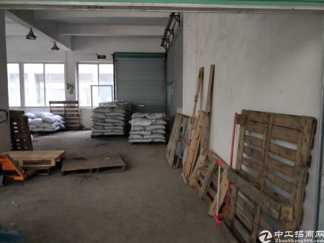新田新出带装修办公室厂房出租410平米,只租20块