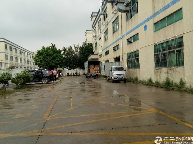福永原房东独院6000平带精装修出租