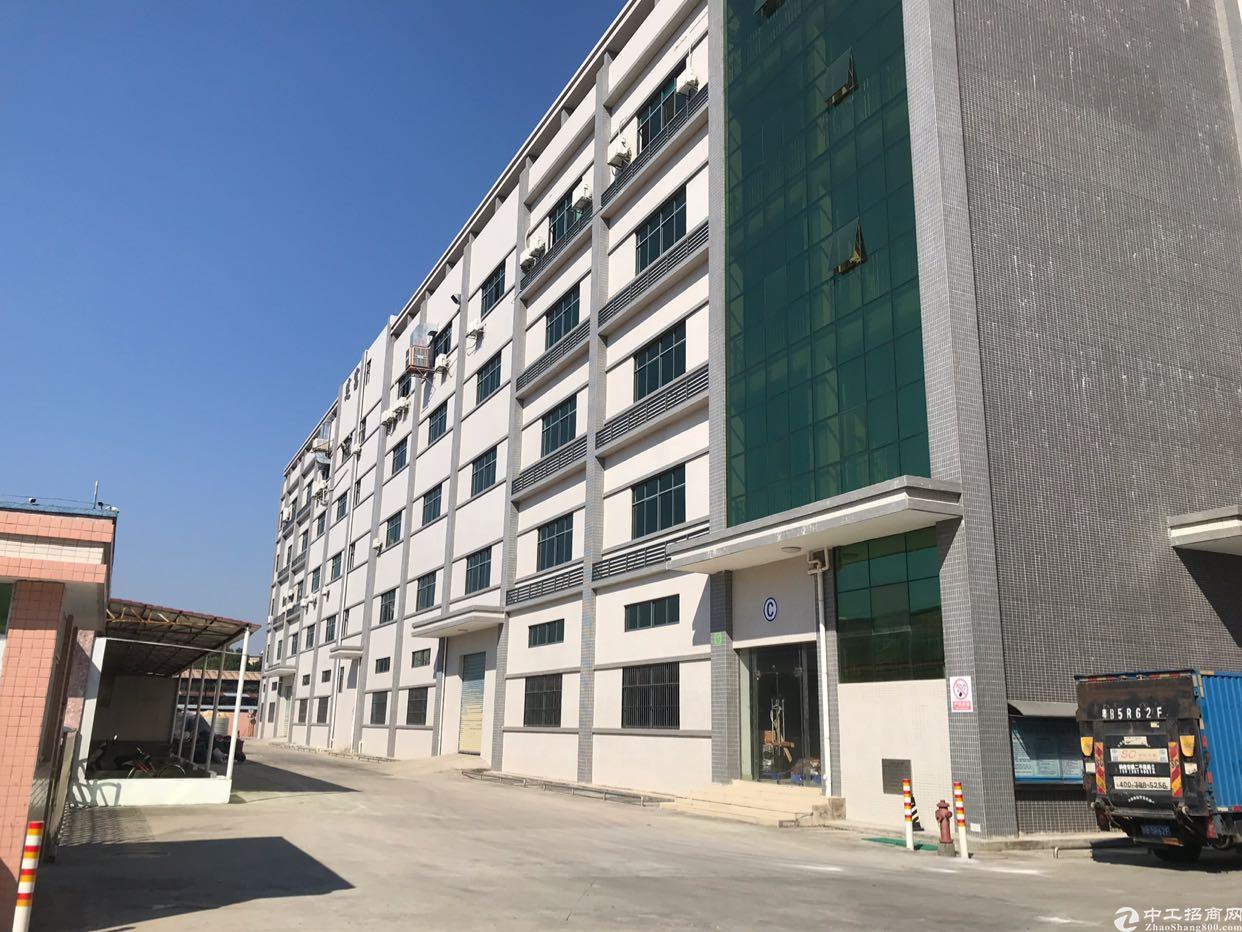惠州沙田新出22000平方标准厂房-图3