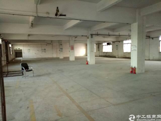 黄江北岸分租一楼500平