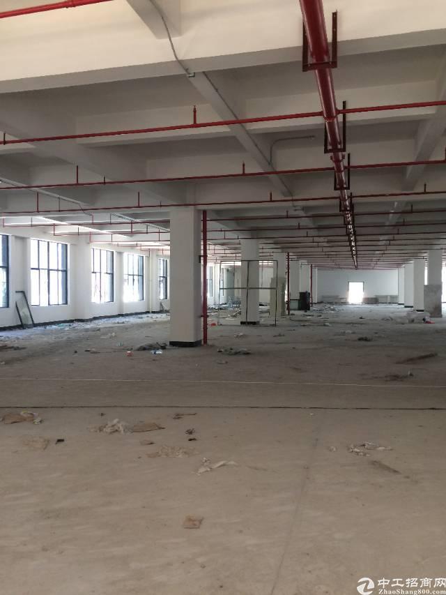 黄江镇靠深圳公明楼上2910平米标准厂房出租