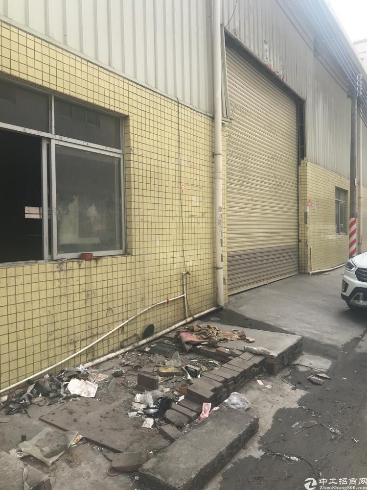 大岭山新出独栋厂房1700平周边无居民,滴水8米中间无柱子