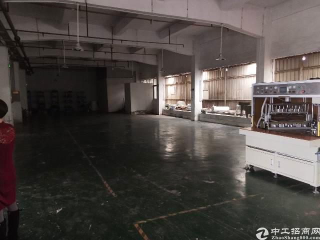 大岭山新出厂房800平