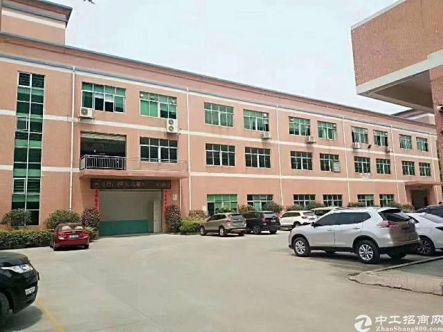 茶山镇独院标准厂房8000平方出租