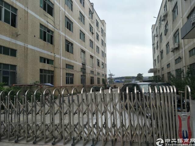 福永原房东出租8000平方。1F层高6米。厂房9成新。电50