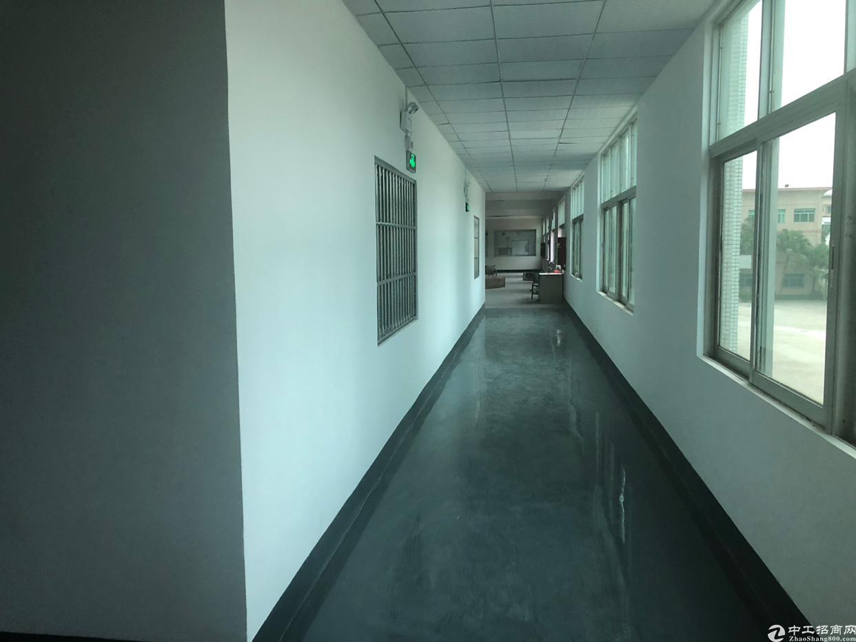 坪山中心主道边工业园二楼2200平米16元出租可分租