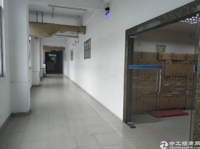 万江新和社区大型工业园内厂房出租