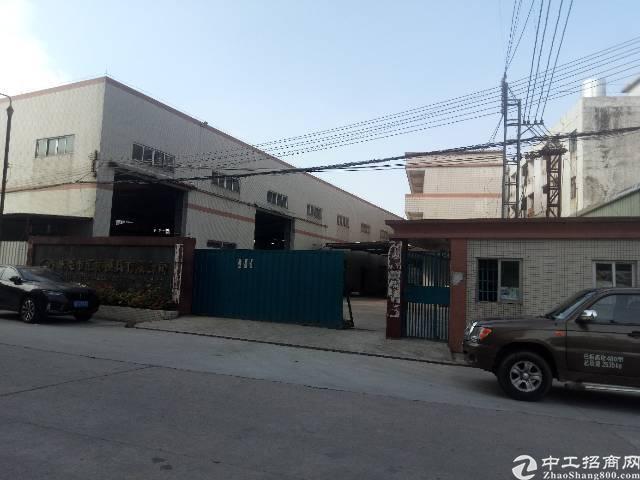 茶山镇原房东砖墙到顶单一层厂房出租