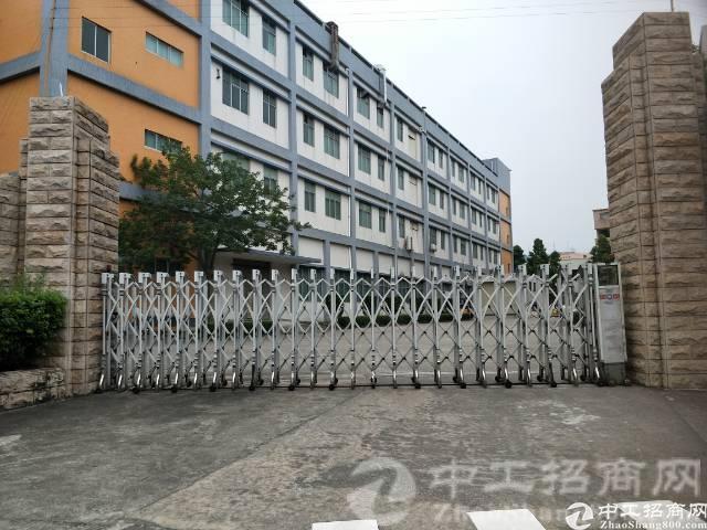 厚街镇珊美村现有标准独院厂房6900平米原房东出租-图3