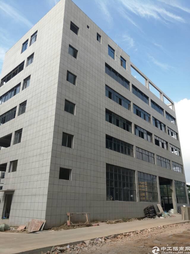黄陂横店独栋厂房,单层1200平,6米层高带牛角,地下停车库