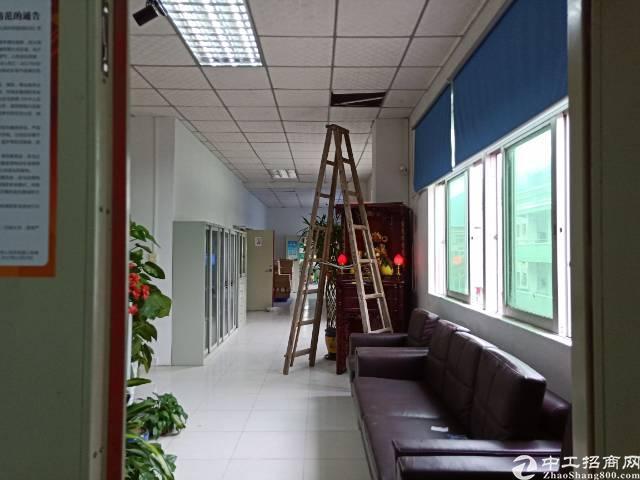 石井独院分组二楼1080平,现成办公室装修,入住即可