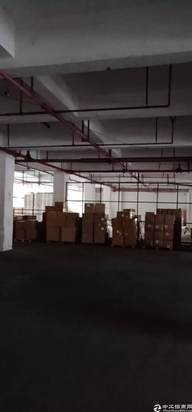 龙华民治大型物流园单一层厂房出租