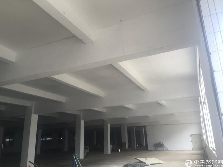 惠州市罗阳镇新出独门独院标准厂房出租