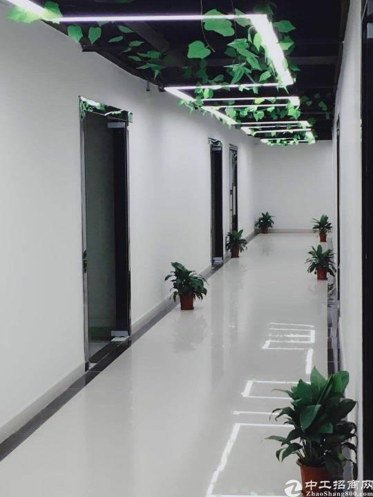 沙井新桥高速路口新出装修写字楼出租430平,精装修