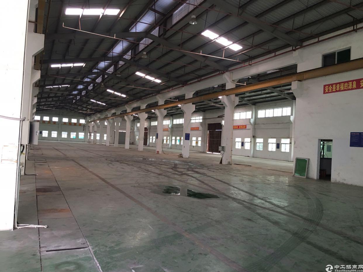 横沥化工厂胶水涂料厂出租3500平方