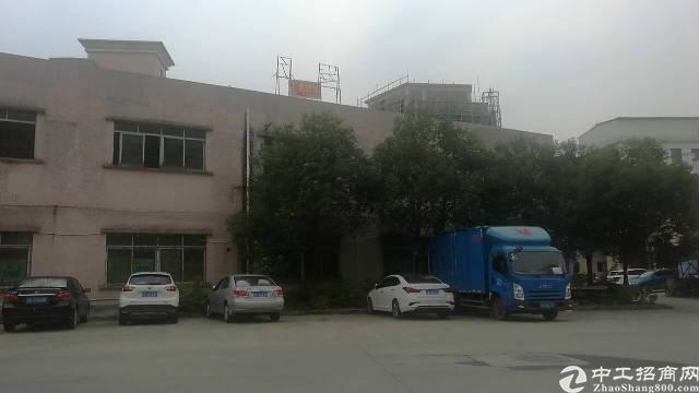 茶山镇新出1500独院火爆出租