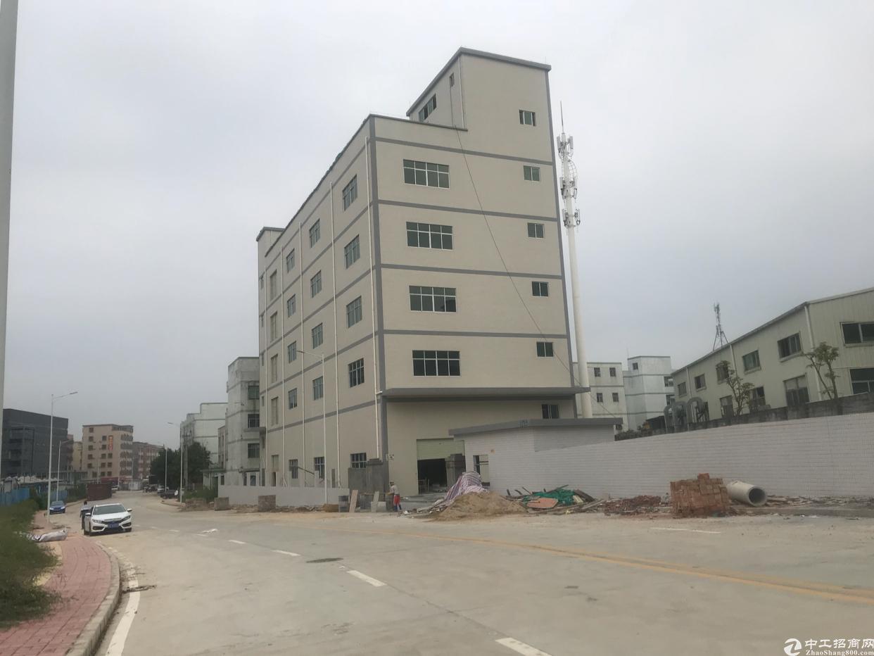 清溪紧邻凤岗村委无公摊独院4700一楼6米