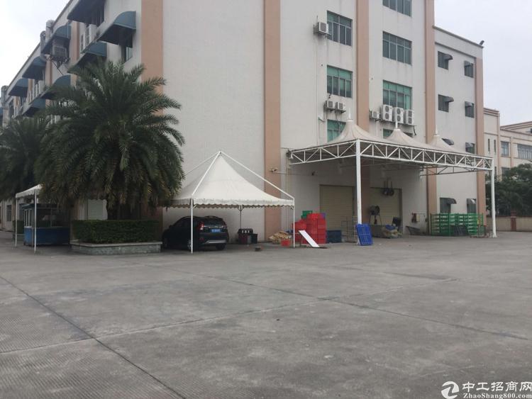 东莞长安15000平米国有证厂房低价出售