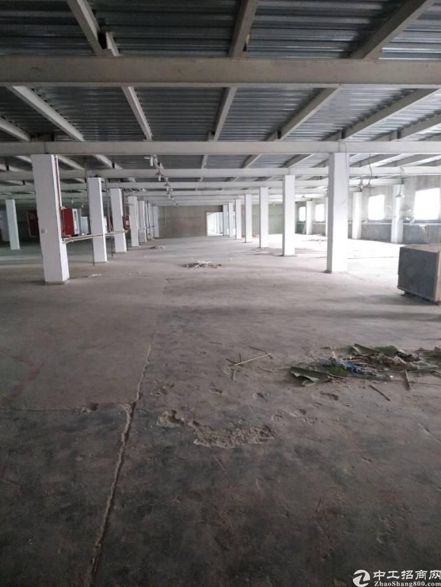 龙岗五联一楼钢构3000平方实惠出租