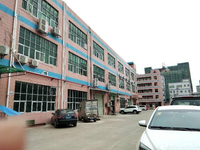长安乌沙大润发旁新出一楼精装修厂房530平出租