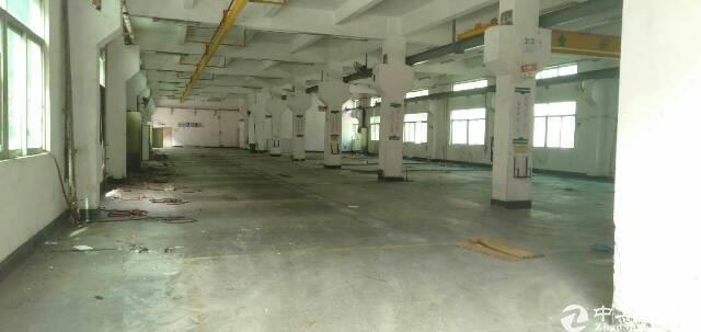 坪地新出独栋4500平标准厂房低价出租