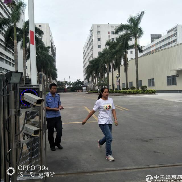 虎门镇南栅靠沿江高速 园区自用厂房5268平方/20元无公摊