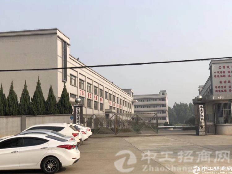 厚街镇大迳村现有原房东带红本独院厂房9600平米招租