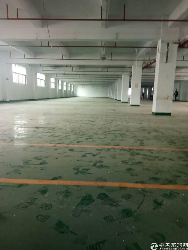 独院厂房水电装修地坪漆空地大标准厂房
