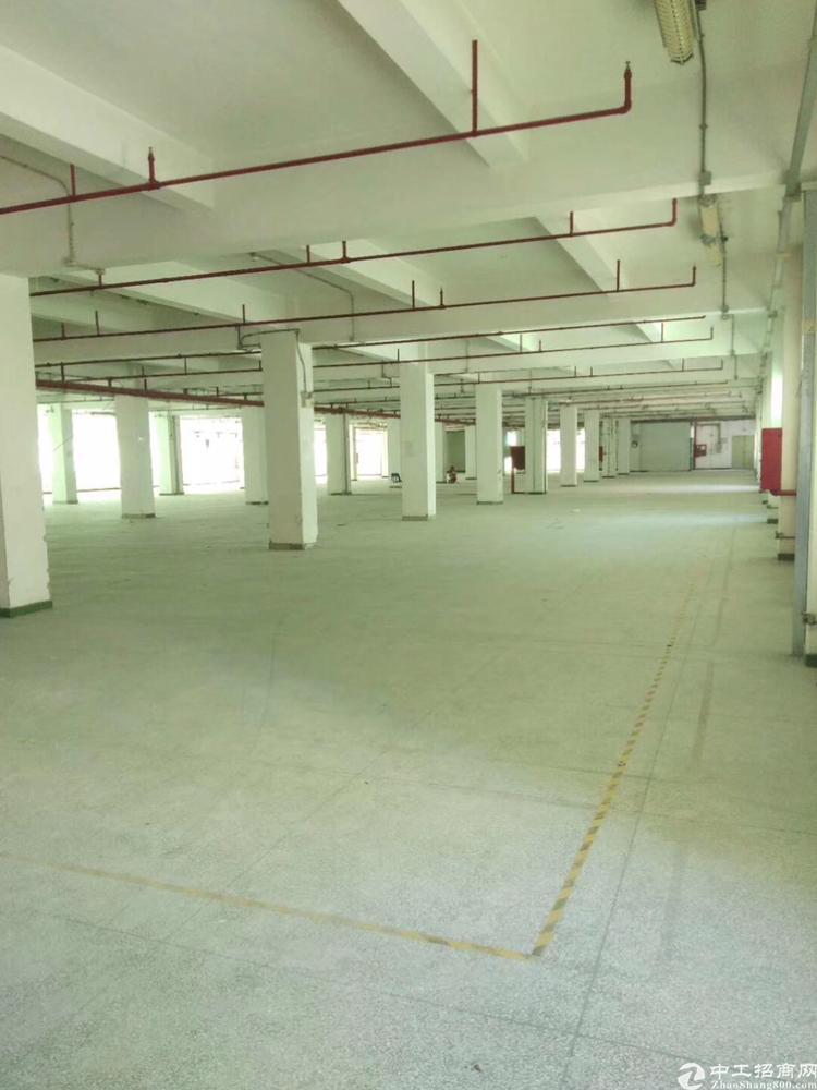固戍标准厂房11400平米,独院交通便利,可以签10年