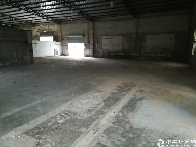 观澜村委单一层钢构200平出租