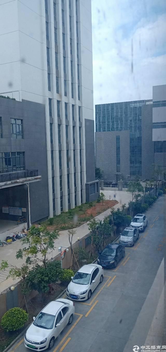 坪山中心城区域全新写字楼20000平米