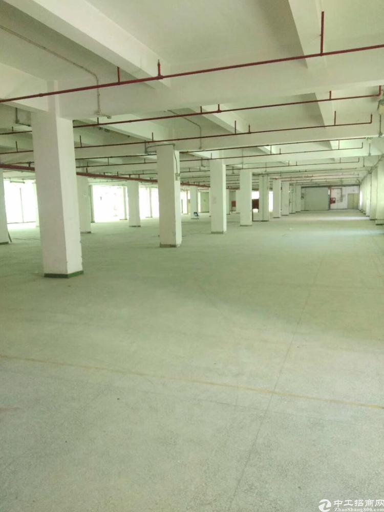 西乡臣田工业区花园式工厂楼上3600平方大小可以分租