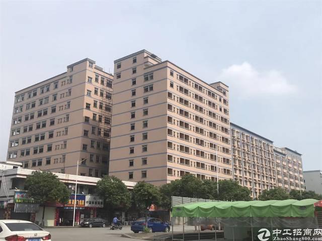 虎门镇南栅沿江高速出口附近厂房21000平米出租