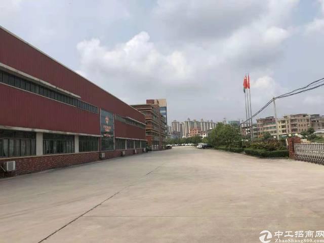 坪山石井新出滴水红本钢构厂房出租6500平米