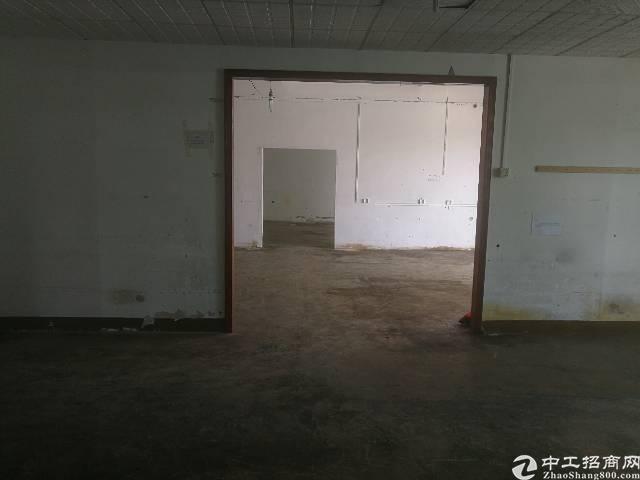 带办公室工业区1300平厂房招租,带红本,已过消防!-图2
