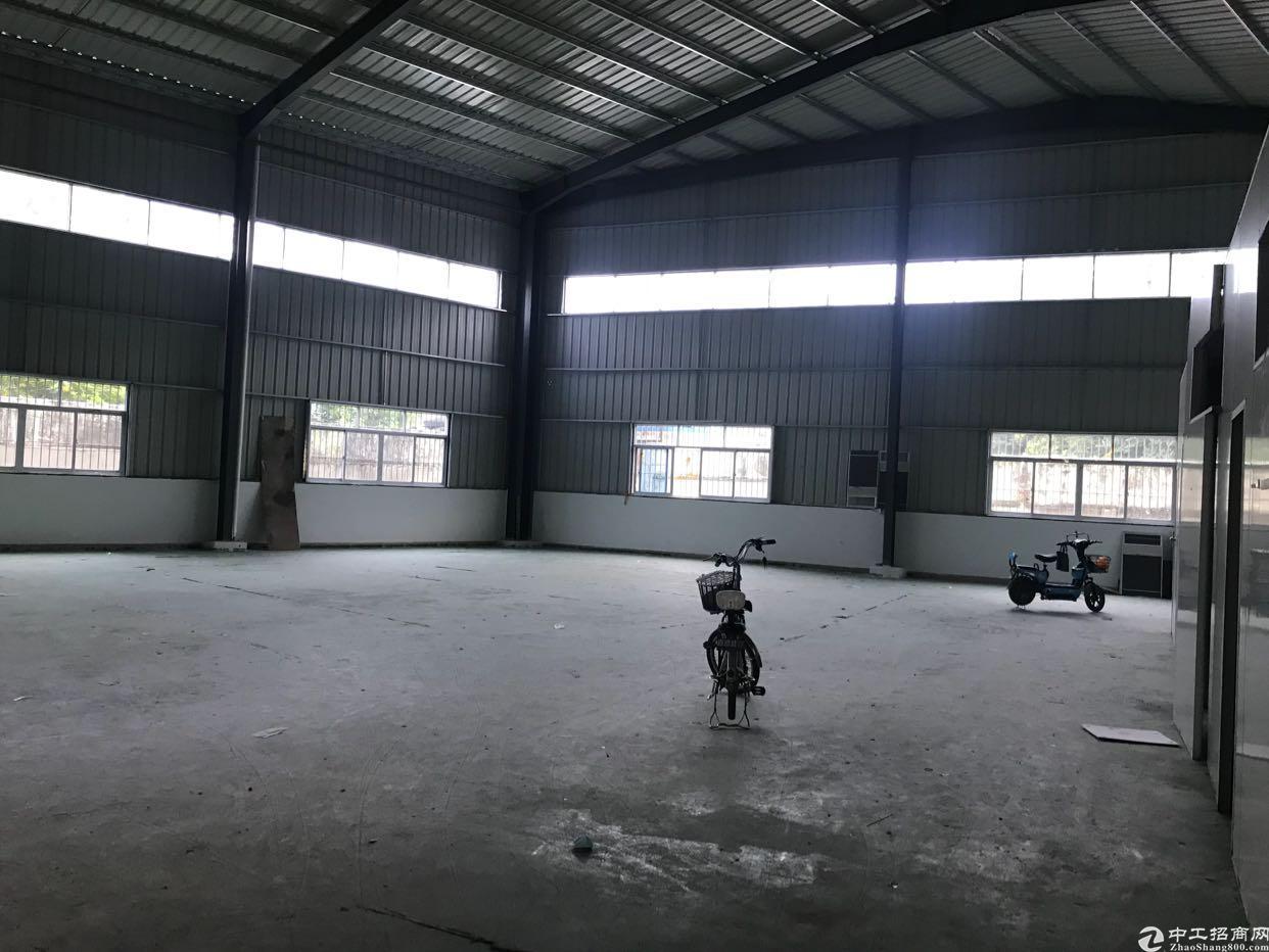 凤岗镇雁田原房东钢结构出租面积500平