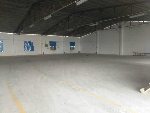 独门独院1200平方钢构厂房招租