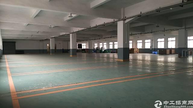 虎门实业客厂房分租3100平方租19元现成地坪漆工业用地